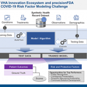 Veterans Health Administration Launching COVID-19 Risk Factor Modeling Challenge